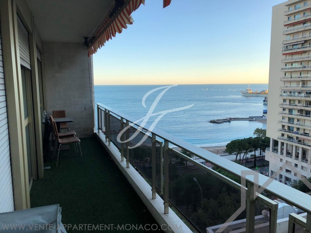 La Rousse - Le Vallespir - One bedroom apartment - Properties for sale in Monaco
