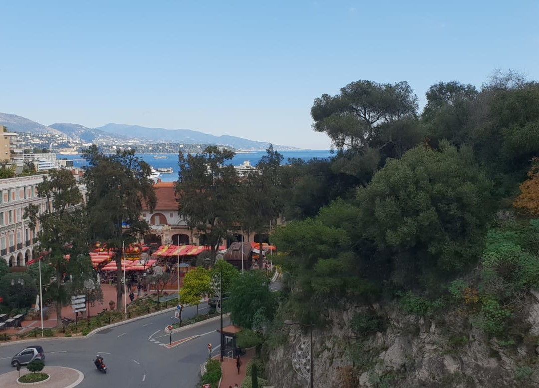 Charming 2 room flat penthouse! Delivered new in 2019 - Properties for sale in Monaco
