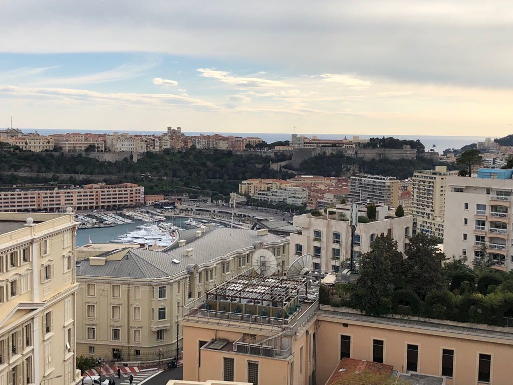 2/3 ROOMS - PARK PALACE - HIGH FLOOR - Properties for sale in Monaco