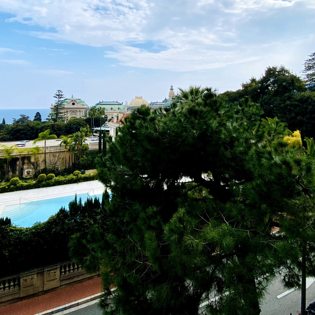 MONACO CARRE D'OR FLORALIES CASINO VIEW MIXTE CELLAR PARKING - Properties for sale in Monaco