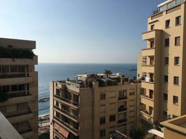 1 bedroom Apartment - Château Amiral - close to beach