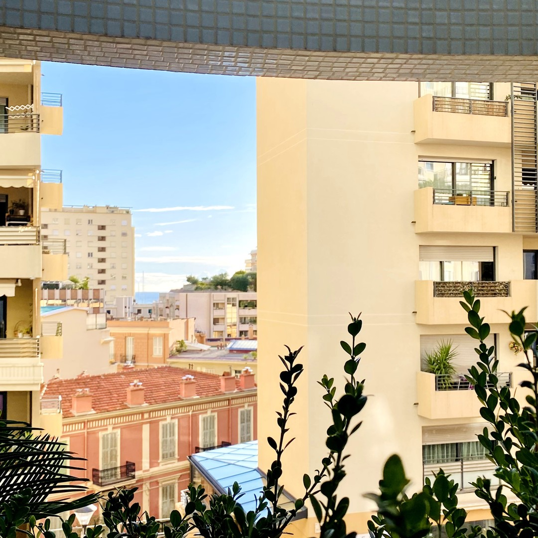 MONACO CONDAMINE STELLA 2 ROOMS DUPLEX MIXTE PARKING
