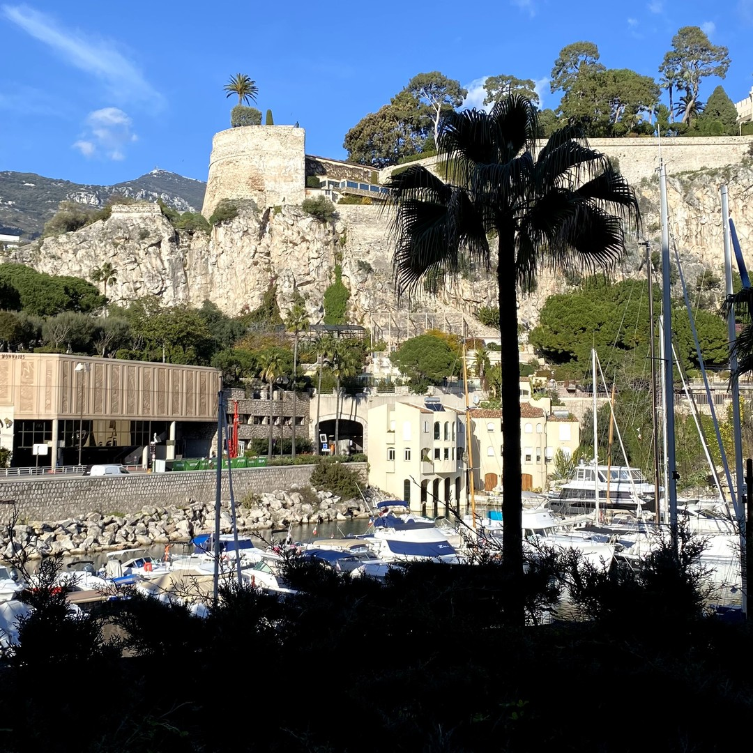 MONACO FONTVIEILLE GIOTTO 3 ROOMS 142 sqm PRIVATE ENTRY MIXTE CELLAR