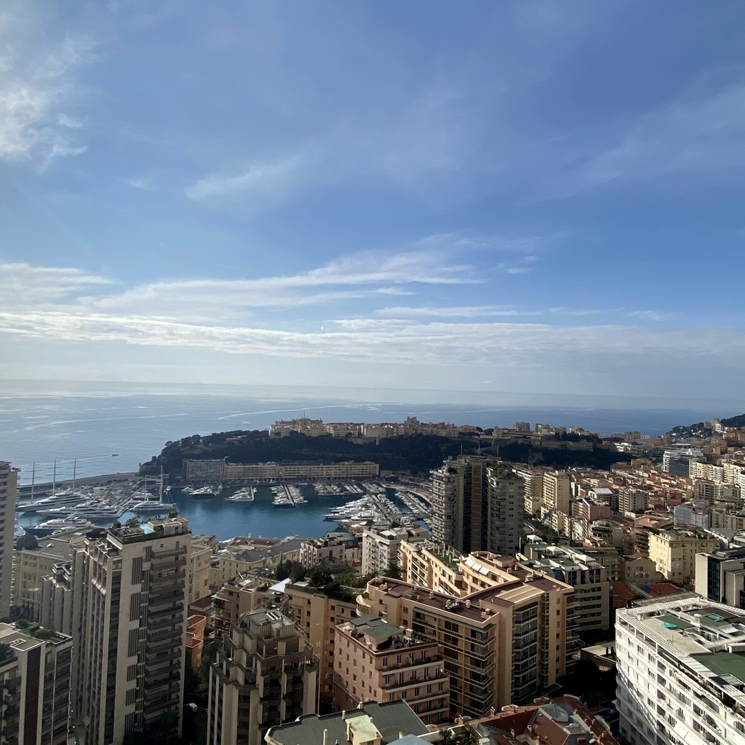 MONACO CENTER MILLEFIORI 2 ROOMS MIXTE PANORAMIC PARKING