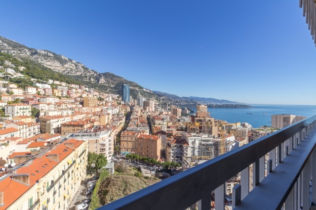 IDEAL INVESTMENT IN MONTE CARLO