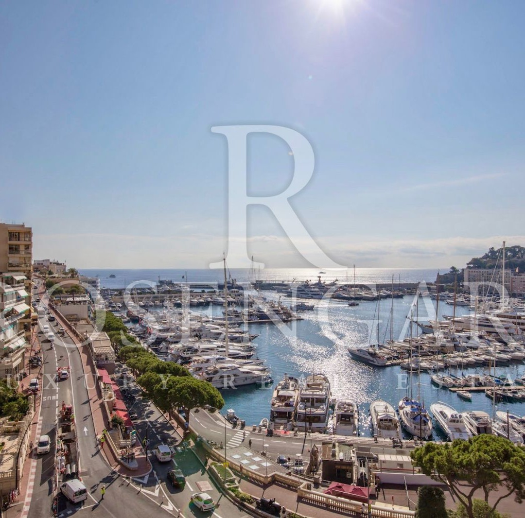 One of the Most Exceptional Apartment that Monaco has to Offer
