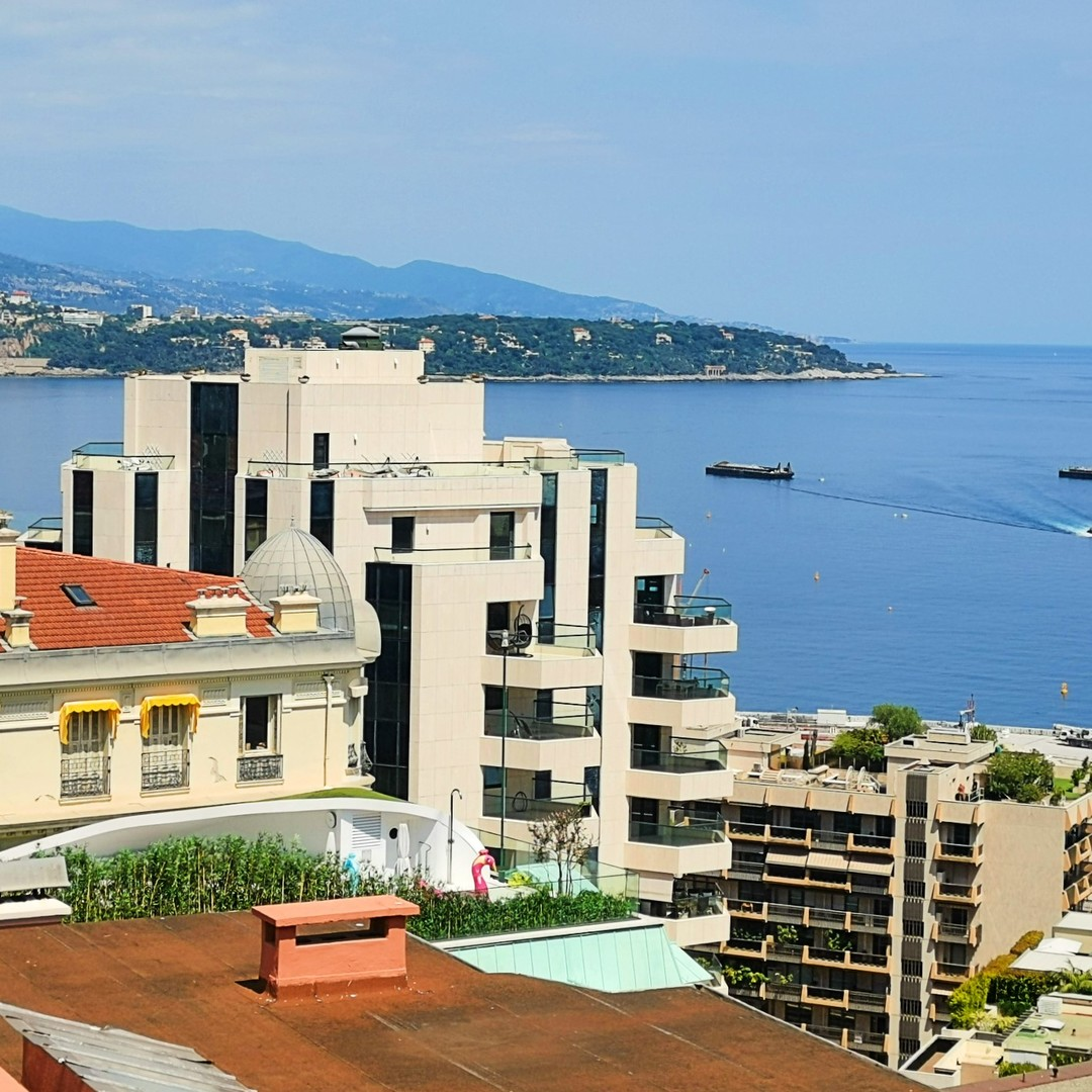 CARRE D'OR: STUDIO APARTMENT WITH SEA VIEW, DUAL USAGE